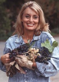 Cyn-Grapes